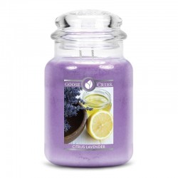 Goosecreek Citrus Lavender