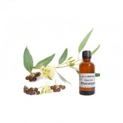 Kaarsen benodigdheden - geurolie - eucalyptus