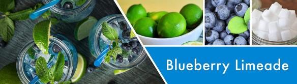 Goosecreek blueberry limeade