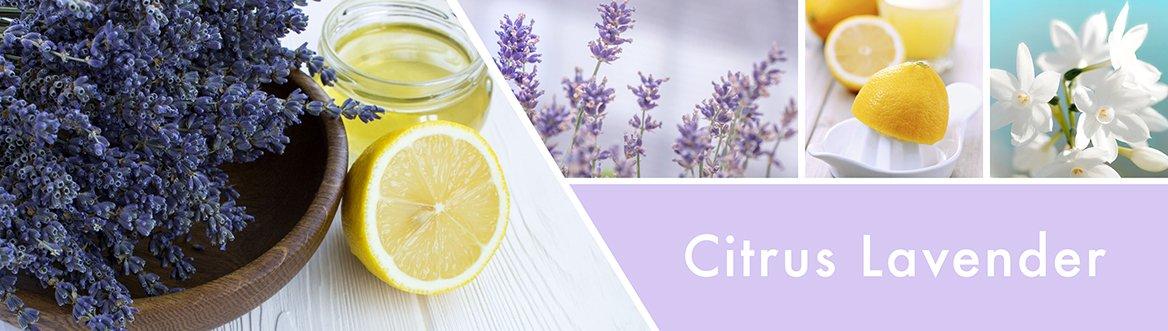 Citrus-Lavender-Fragrance-Notes.jpg