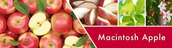 Goosecreek macintosh apple